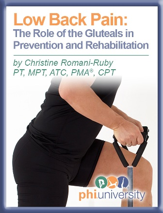 Low Back Pain The Role of the Gluteals in Prevention and Rehabilitation-
